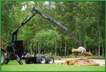 Инструкция по охране труда для работающих на лесозаготовках, вальщики, заготовка леса, ИОТ, техника безопасности, охрана труда