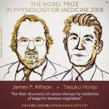 Чтобы с раком боролся сам иммунитет. Ученые объясняют Нобель-2018 в медицине