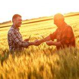 «Зеленый» свет аграрной децентрализации – анализ закона №2194