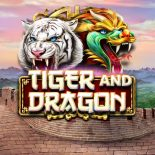Новый игровой автомат Tiger and Dragon в онлайн казино Вулкан