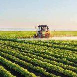 Рынок земли по-белорусски. Как исключительно государственная собственность на землю сочетается с высокими технологиями управления?