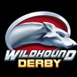 Казино Вулкан представляет новые игровые автоматы Wildhound Derby и Sweet Success Megaways