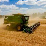 Урожай зерновых 2021 года и прогноз цен на кукурузу, пшеницу, ячмень и рапс